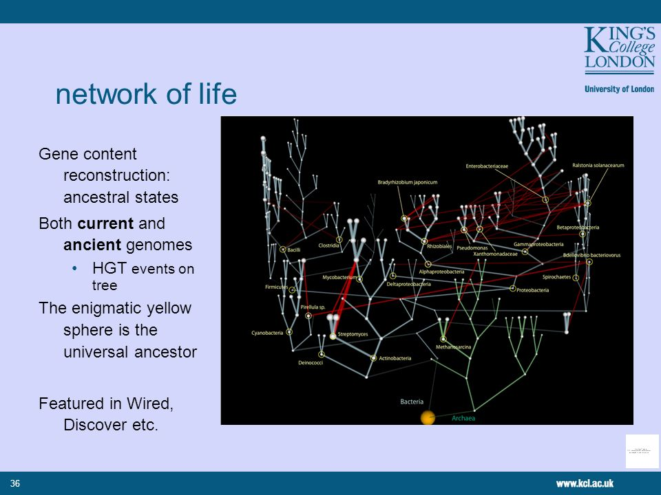 36 Gene content reconstruction: ancestral states Both current and ancient genomes HGT events on tree The enigmatic yellow sphere is the universal ance