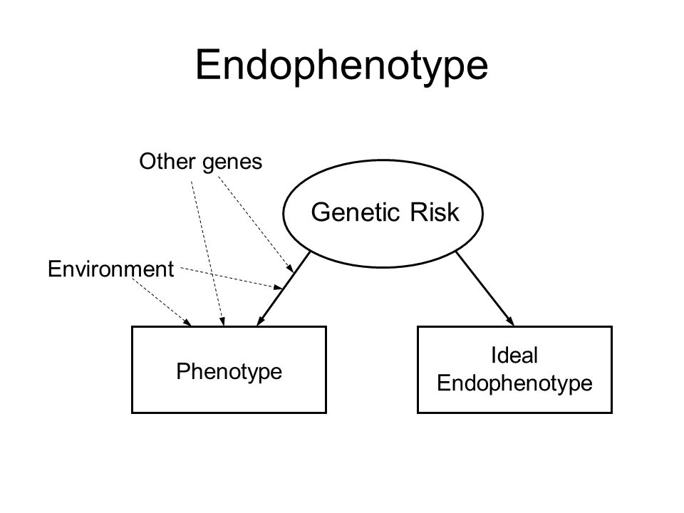 Endophenotype Genetic Risk Ideal Endophenotype Phenotype Environment Other genes