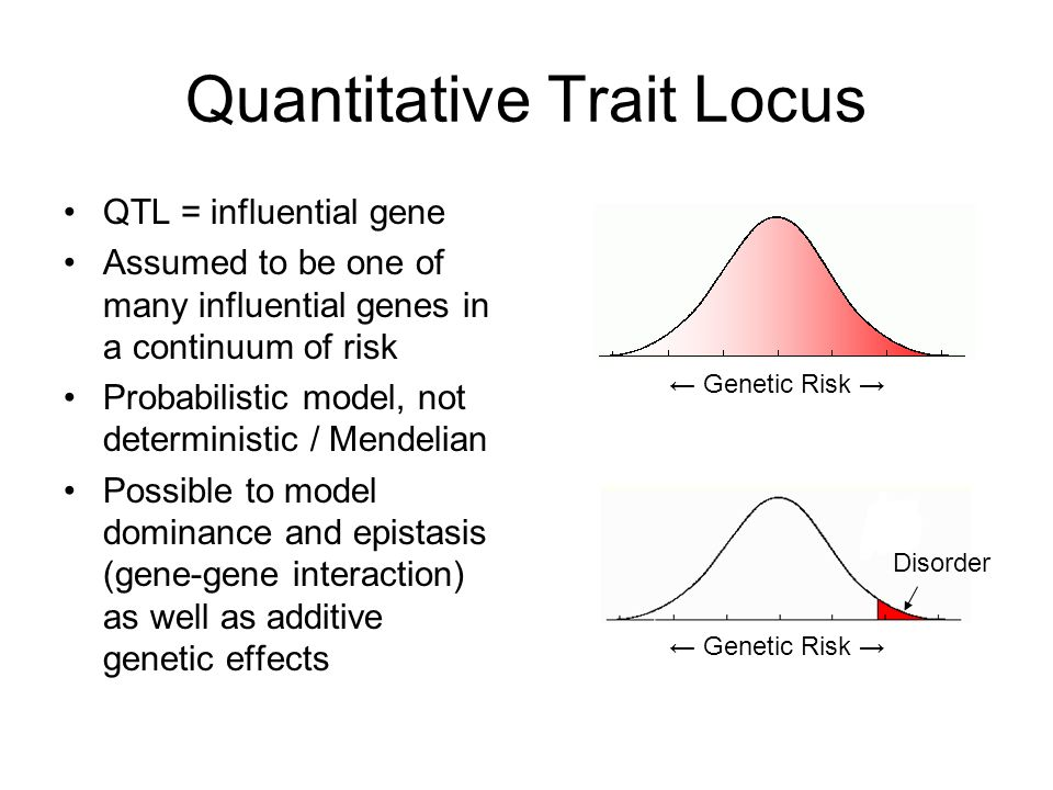 Quantitative Trait Locus QTL = influential gene Assumed to be one of many influential genes in a continuum of risk Probabilistic model, not determinis