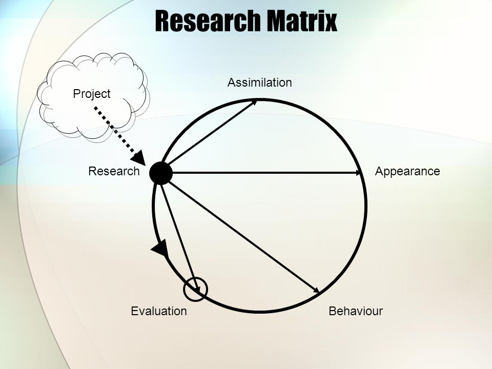 Research Matrix Research EvaluationBehaviour Appearance Assimilation Project