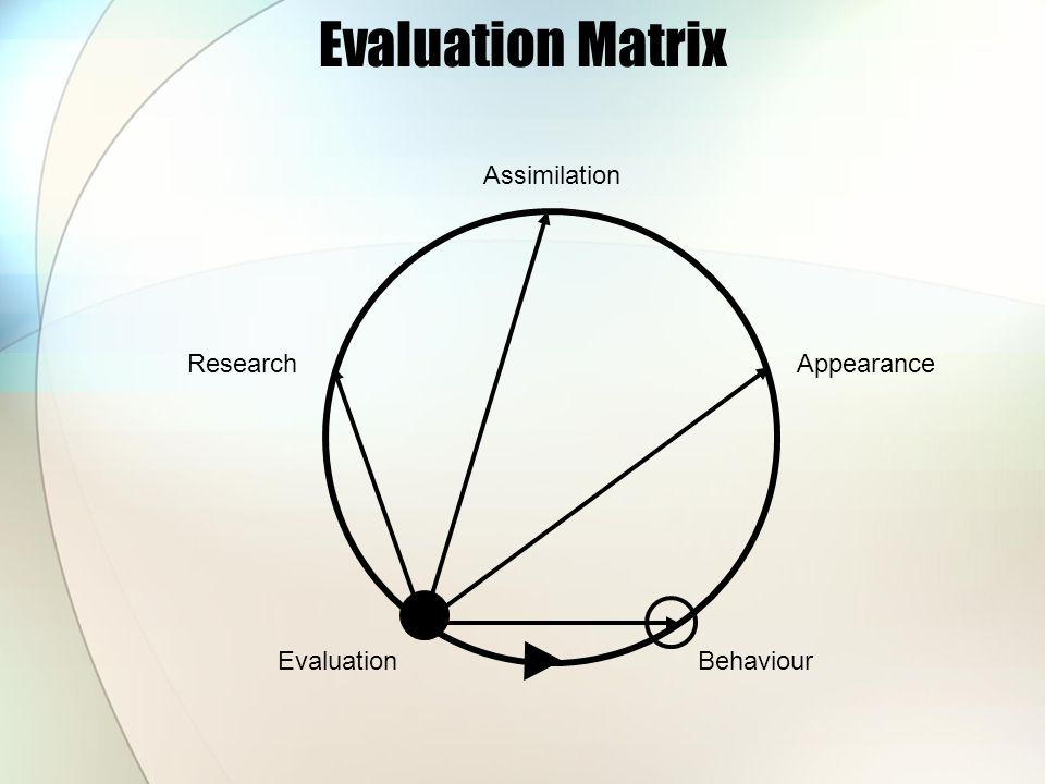 Evaluation Matrix Research EvaluationBehaviour Appearance Assimilation