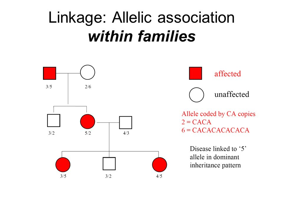 Linkage: Allelic association within families