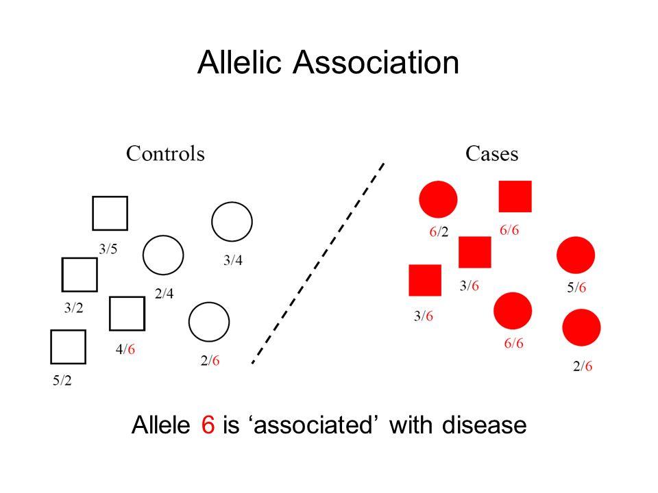Allelic Association Allele 6 is associated with disease