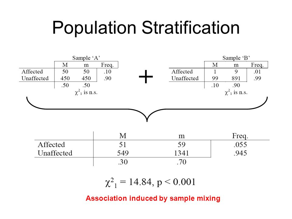 Population Stratification Association induced by sample mixing
