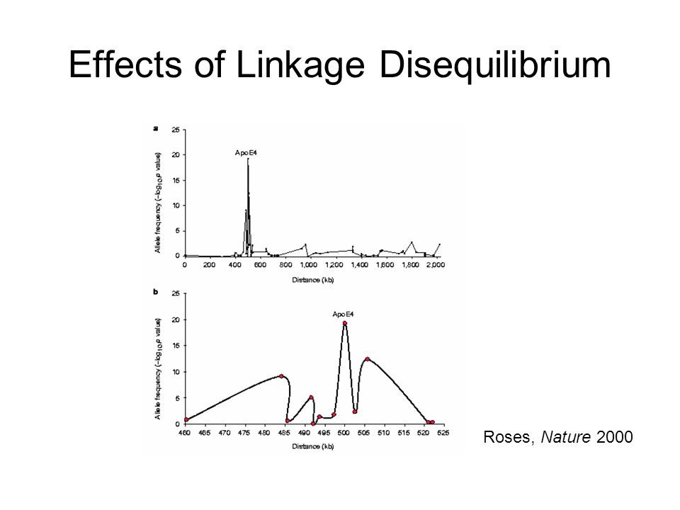 Effects of Linkage Disequilibrium Roses, Nature 2000