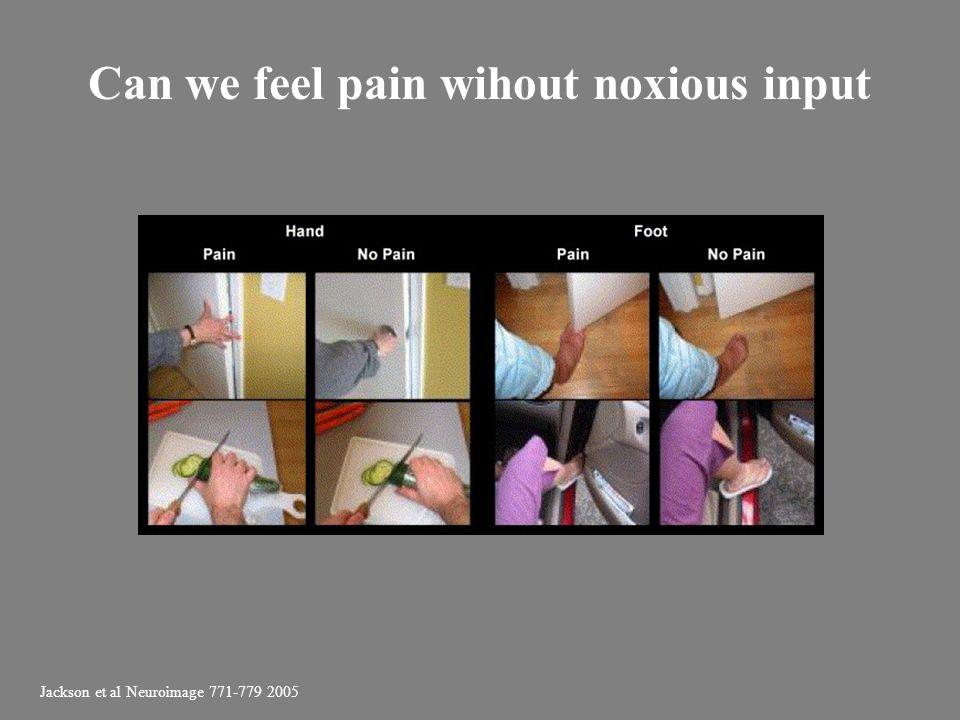 Jackson et al Neuroimage 771-779 2005 Can we feel pain wihout noxious input