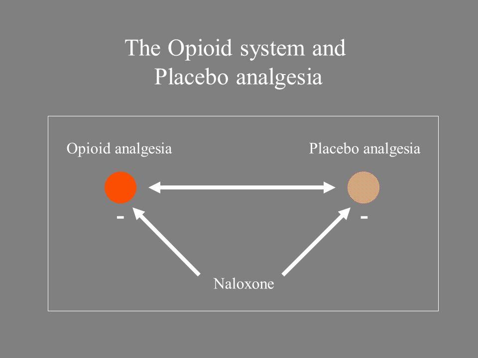 Opioid analgesiaPlacebo analgesia Naloxone -- The Opioid system and Placebo analgesia
