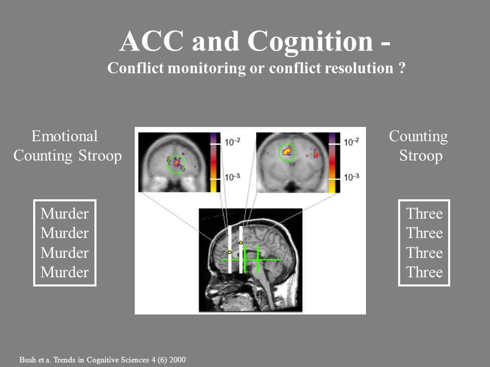 Emotional Counting Stroop Counting Stroop Three Murder Bush et a. Trends in Cognitive Sciences 4 (6) 2000 ACC and Cognition - Conflict monitoring or c