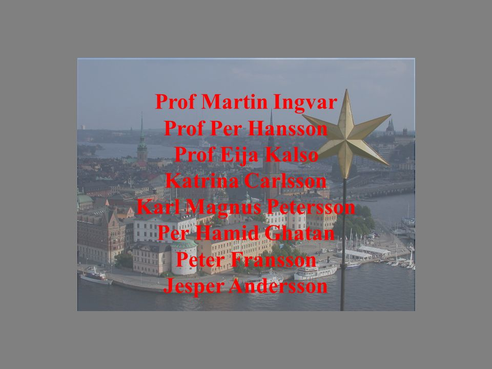 Prof Martin Ingvar Prof Per Hansson Prof Eija Kalso Katrina Carlsson Karl Magnus Petersson Per Hamid Ghatan Peter Fransson Jesper Andersson