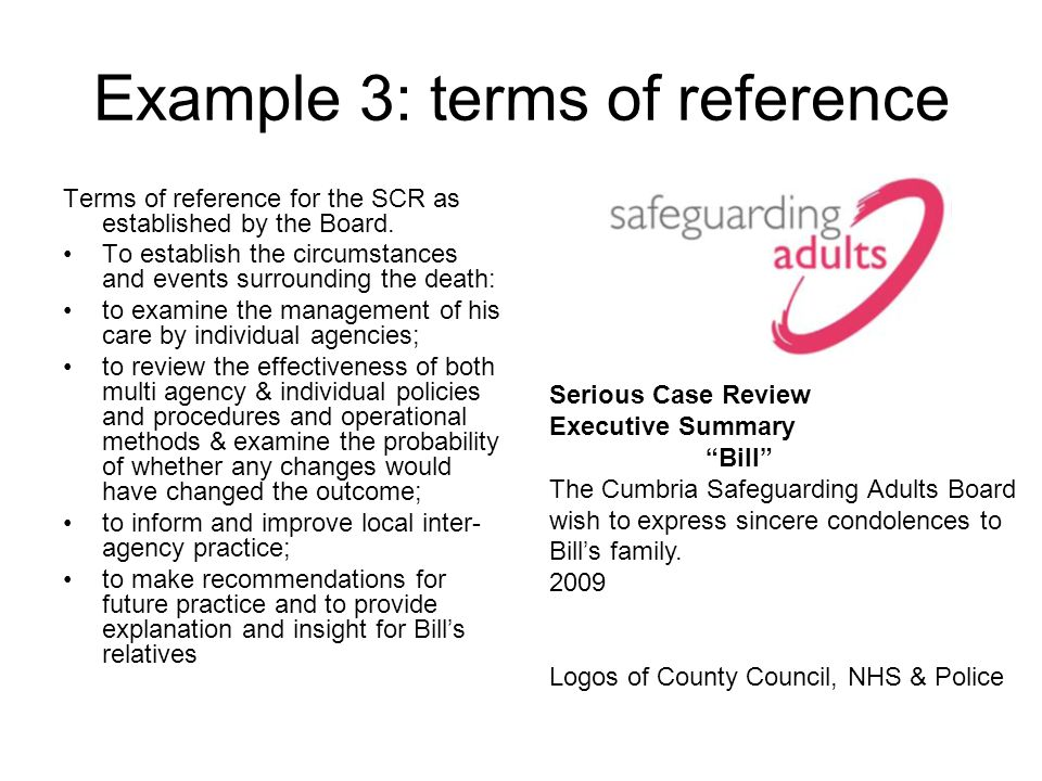 Example 3: terms of reference Terms of reference for the SCR as established by the Board. To establish the circumstances and events surrounding the de