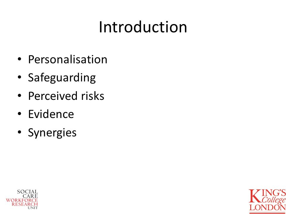 Introduction Personalisation Safeguarding Perceived risks Evidence Synergies
