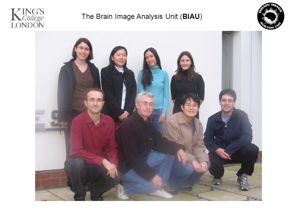 The Brain Image Analysis Unit (BIAU)