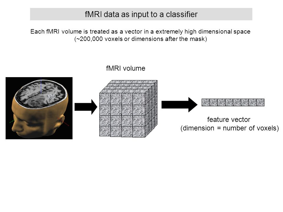 Each fMRI volume is treated as a vector in a extremely high dimensional space (~200,000 voxels or dimensions after the mask) fMRI data as input to a c