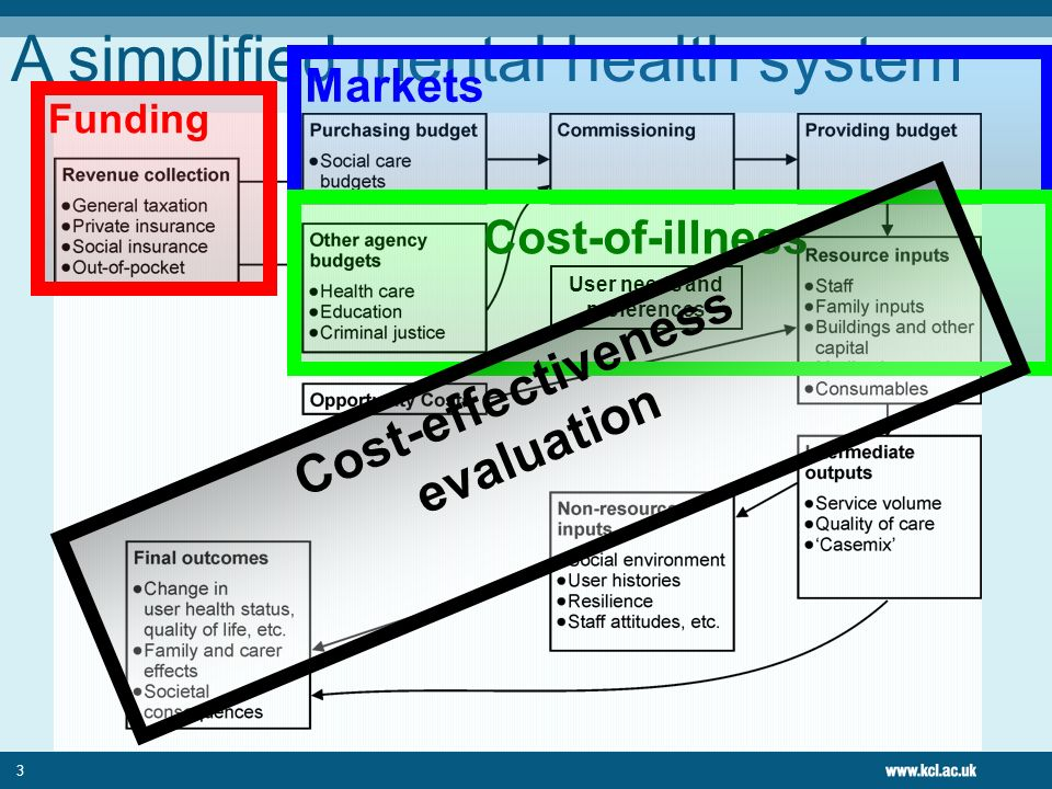 3 A simplified mental health system User needs and preferences Funding Markets Cost-of-illness Cost-effectiveness evaluation