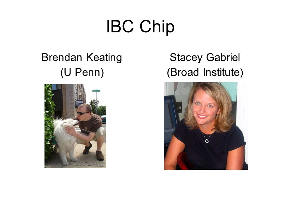 IBC Chip Brendan Keating (U Penn) Stacey Gabriel (Broad Institute)