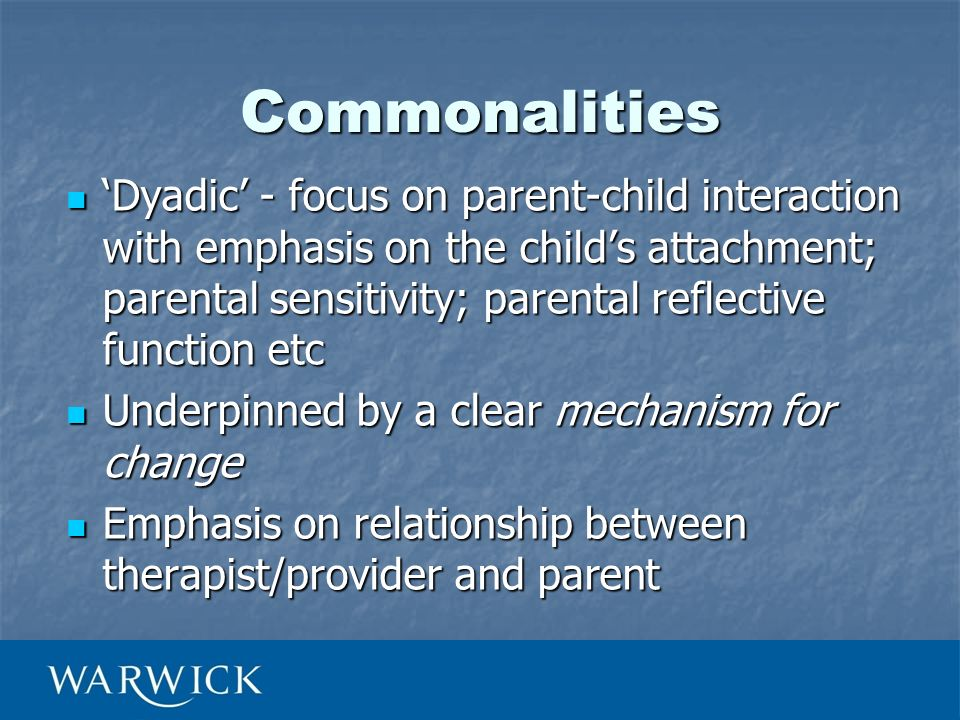 Commonalities Dyadic - focus on parent-child interaction with emphasis on the childs attachment; parental sensitivity; parental reflective function et