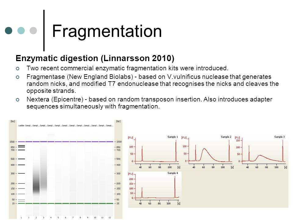 Fragmentation Enzymatic digestion (Linnarsson 2010) Two recent commercial enzymatic fragmentation kits were introduced. Fragmentase (New England Biola
