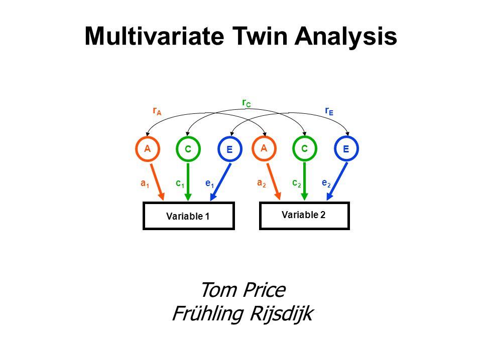 Multivariate Twin Analysis Tom Price Frühling Rijsdijk Variable 1 Variable 2 A C E a2a2 c2c2 e2e2 rArA rErE rCrC A C E a1a1 c1c1 e1e1