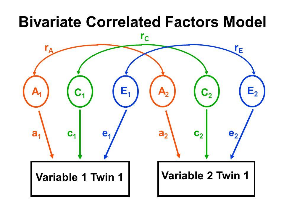 Bivariate Correlated Factors Model Variable 1 Twin 1 Variable 2 Twin 1 A1A1 C1C1 E1E1 a1a1 c1c1 e1e1 A2A2 C2C2 E2E2 a2a2 c2c2 e2e2 rArA rErE rCrC