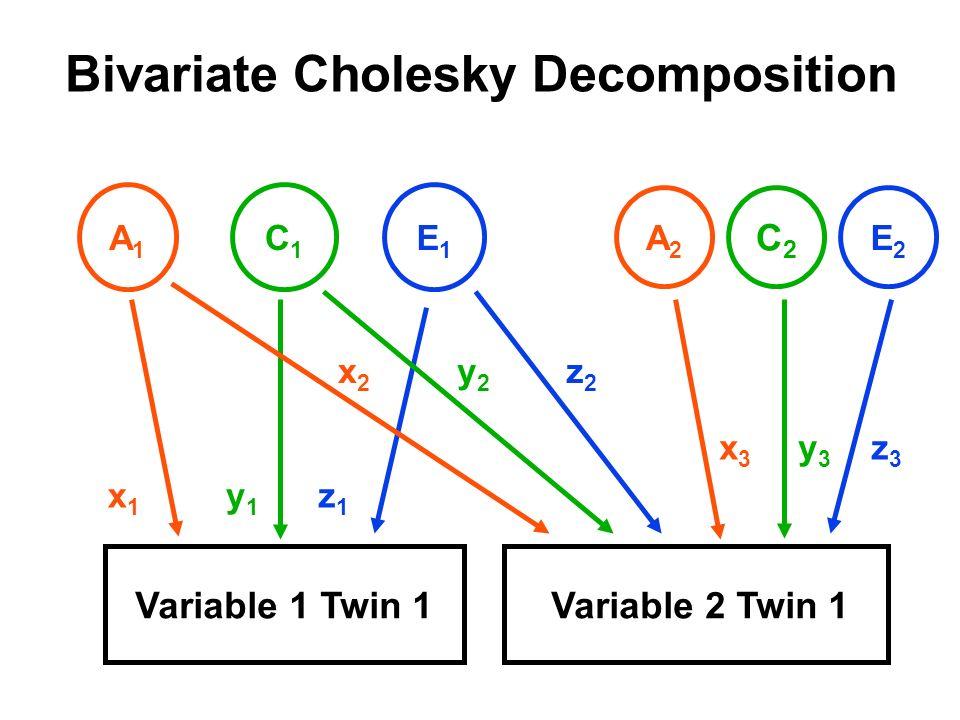 Bivariate Cholesky Decomposition Variable 1 Twin 1Variable 2 Twin 1 A1A1 C1C1 E1E1 x1x1 y1y1 z1z1 A2A2 C2C2 E2E2 x3x3 y3y3 z3z3 x2x2 y2y2 z2z2