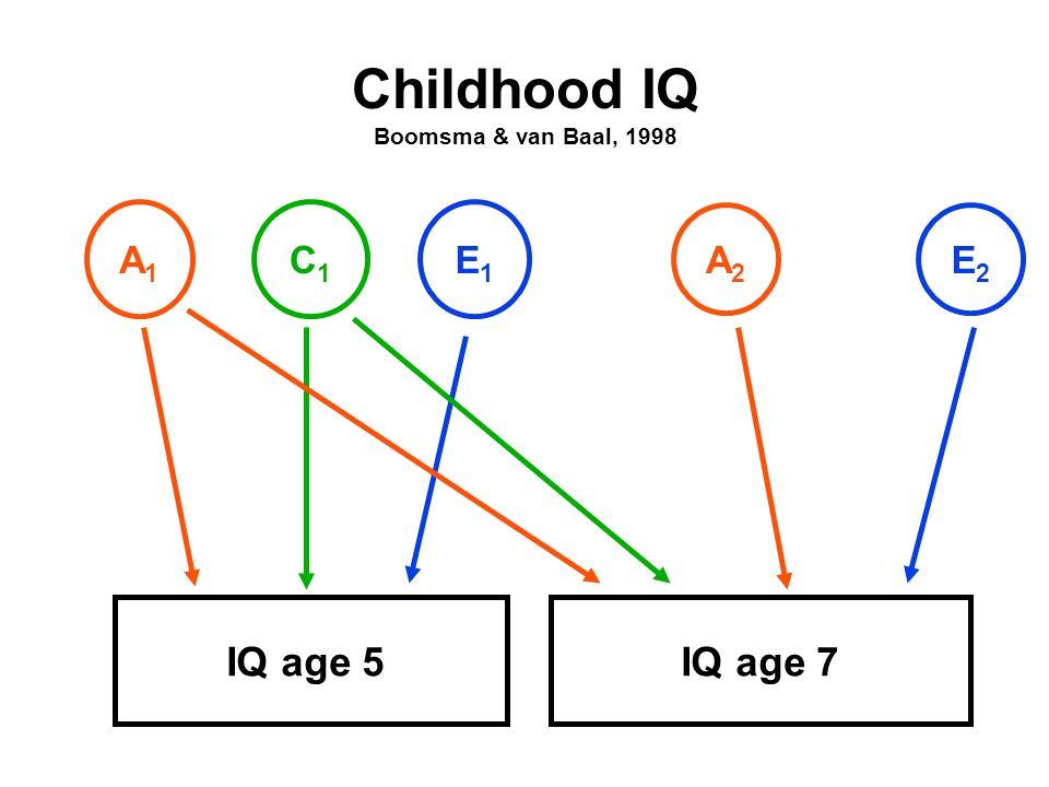 Childhood IQ Boomsma & van Baal, 1998 IQ age 5IQ age 7 A1A1 C1C1 E1E1 A2A2 E2E2