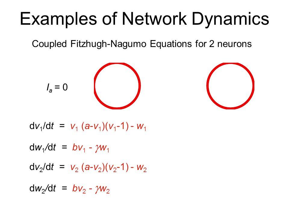 Examples of Network Dynamics Fitzhugh-Nagumo Equations dv/dt = v(a-v)(v-1) - w + I a dw/dt = bv - w