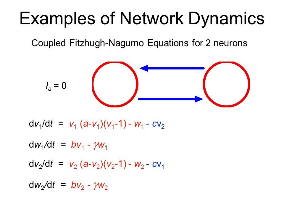 Examples of Network Dynamics Coupled Fitzhugh-Nagumo Equations for 2 neurons dv 1 /dt = v 1 (a-v 1 )(v 1 -1) - w 1 dw 1 /dt = bv 1 - w 1 I a = 0 dv 2