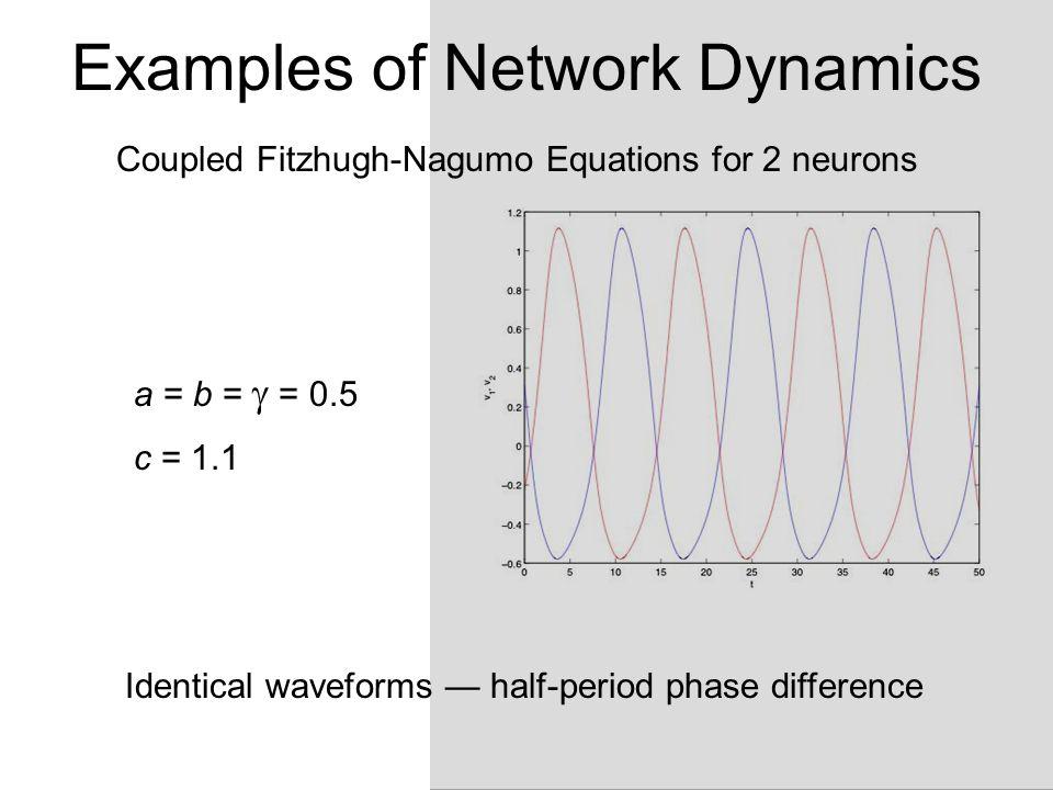 Examples of Network Dynamics Coupled Fitzhugh-Nagumo Equations for 2 neurons dv 1 /dt = v 1 (a-v 1 )(v 1 -1) - w 1 - cv 2 dw 1 /dt = bv 1 - w 1 I a = 0 dv 2 /dt = v 2 (a-v 2 )(v 2 -1) - w 2 - cv 1 dw 2 /dt = bv 2 - w 2