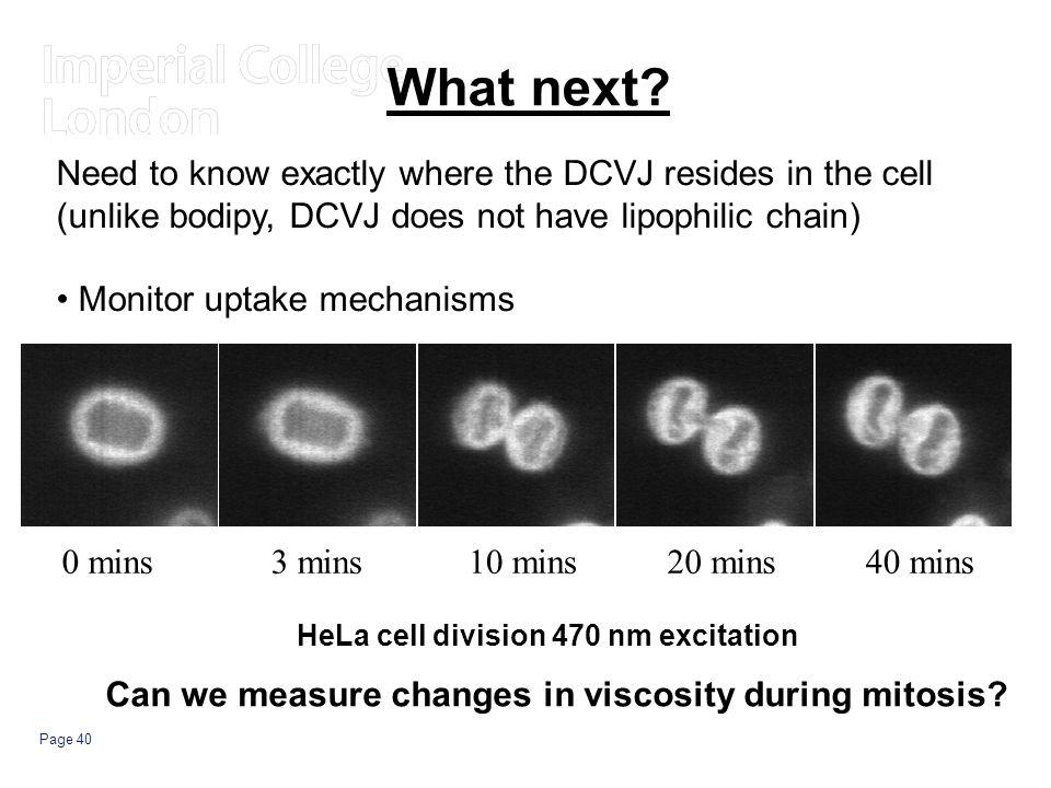 Page 40 HeLa cell division 470 nm excitation 0 mins3 mins10 mins20 mins40 mins What next.