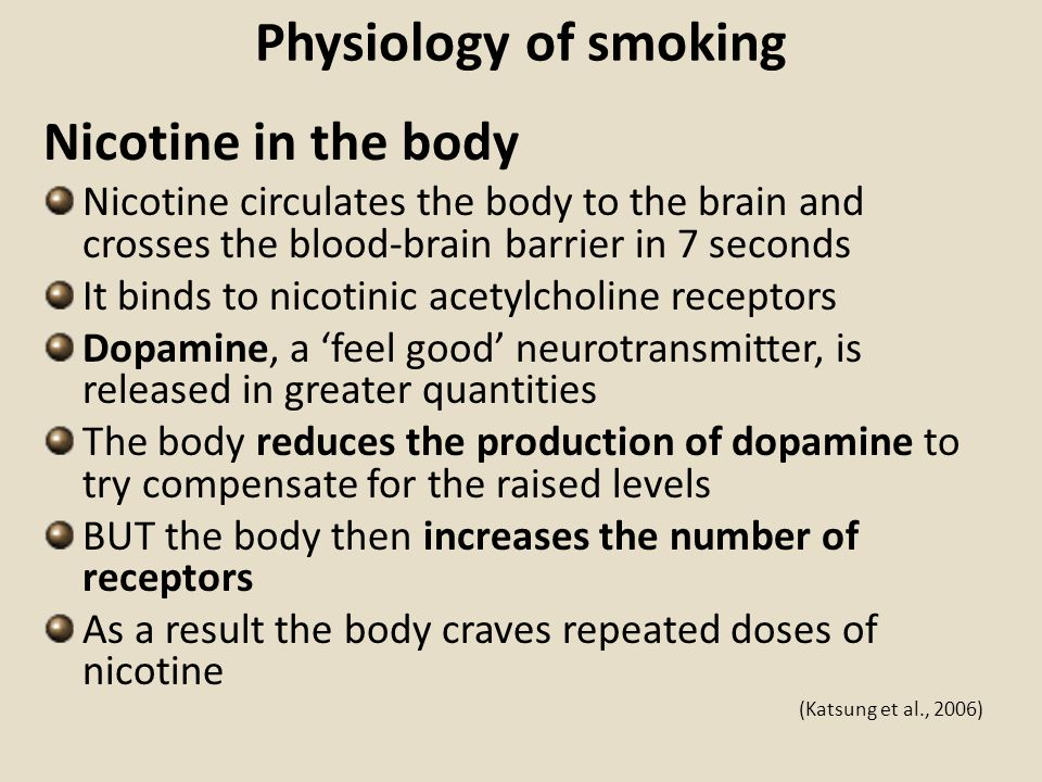 Physiology of smoking Nicotine in the body Nicotine circulates the body to the brain and crosses the blood-brain barrier in 7 seconds It binds to nico