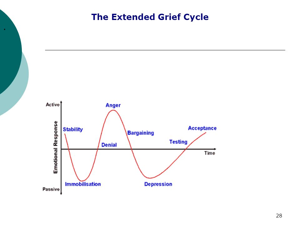 28 The Extended Grief Cycle.