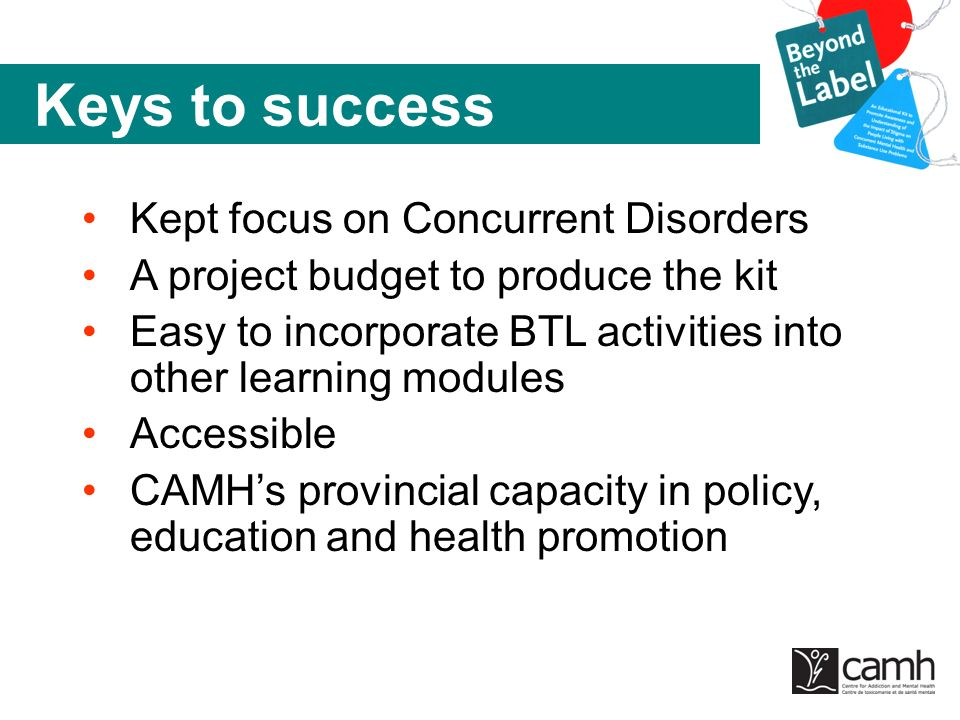 Keys to success Kept focus on Concurrent Disorders A project budget to produce the kit Easy to incorporate BTL activities into other learning modules