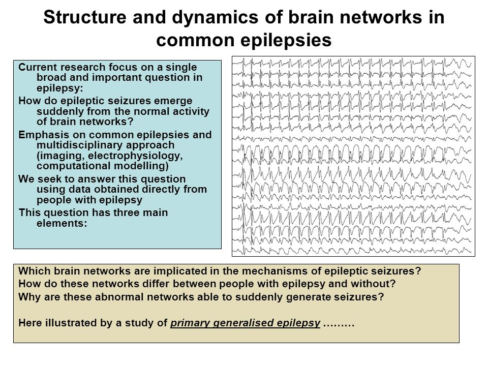 Structure and dynamics of brain networks in common epilepsies Current research focus on a single broad and important question in epilepsy: How do epil