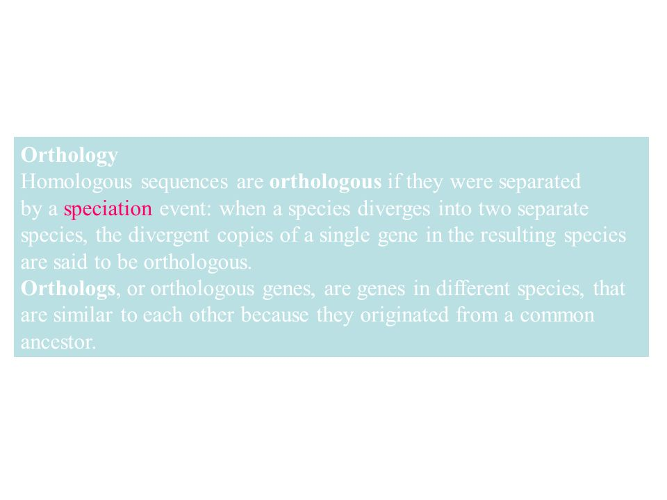 Orthology Homologous sequences are orthologous if they were separated by a speciation event: when a species diverges into two separate species, the divergent copies of a single gene in the resulting species are said to be orthologous.