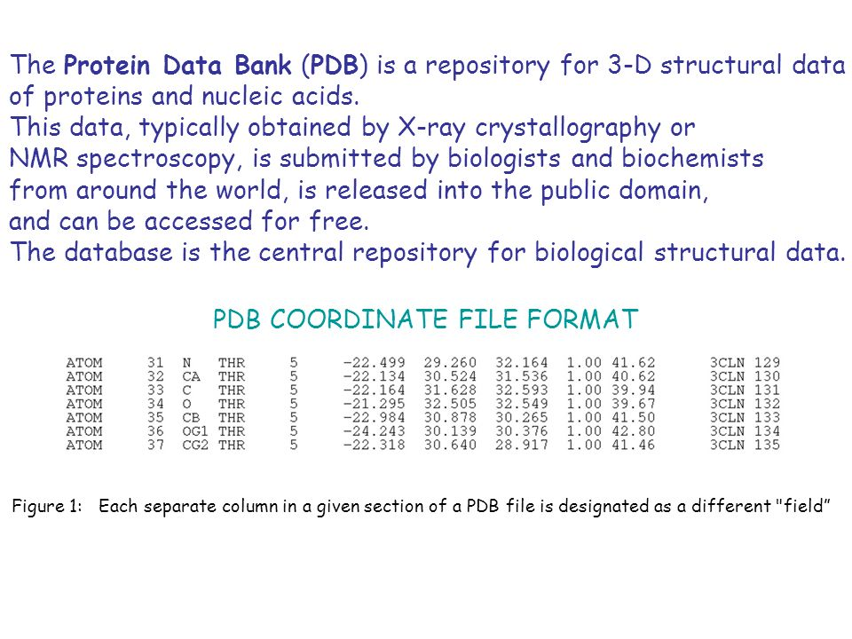The Protein Data Bank (PDB) is a repository for 3-D structural data of proteins and nucleic acids. This data, typically obtained by X-ray crystallogra