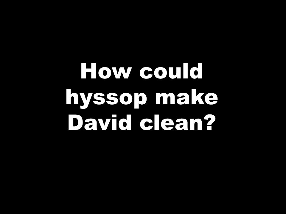 How could hyssop make David clean