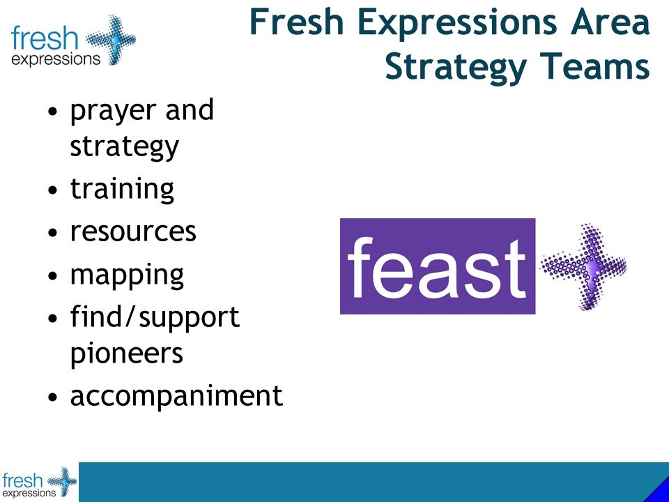 Fresh Expressions Area Strategy Teams prayer and strategy training resources mapping find/support pioneers accompaniment