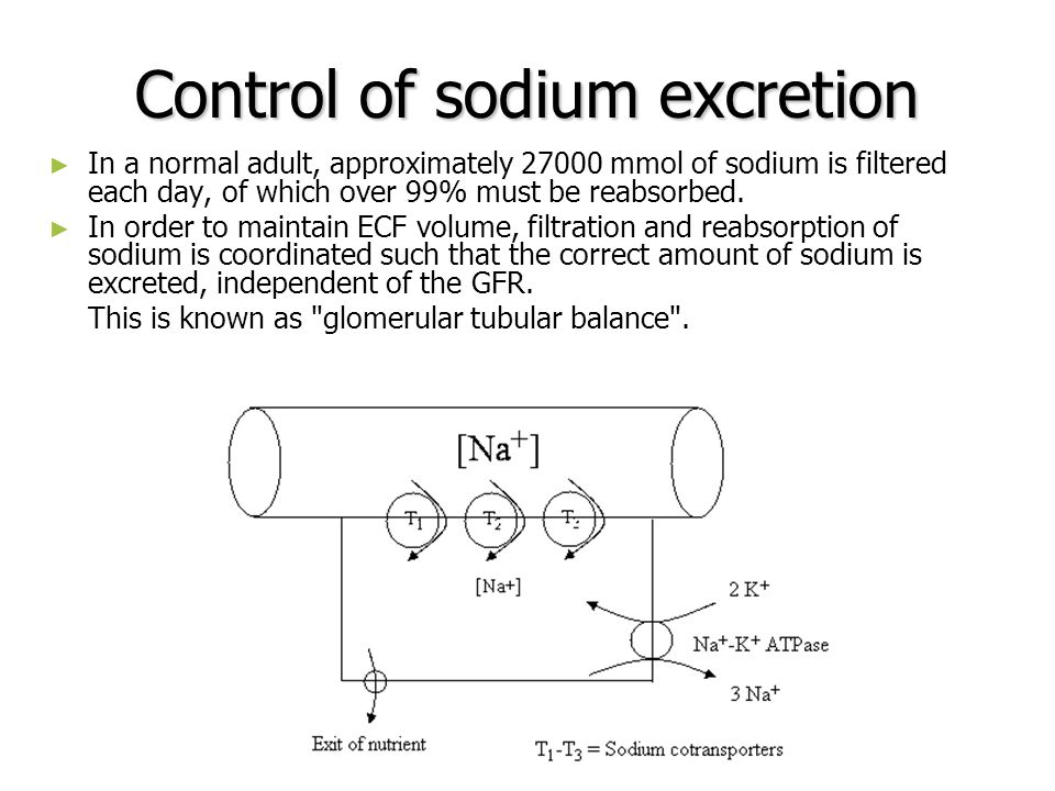 Control of sodium excretion In a normal adult, approximately 27000 mmol of sodium is filtered each day, of which over 99% must be reabsorbed. In order