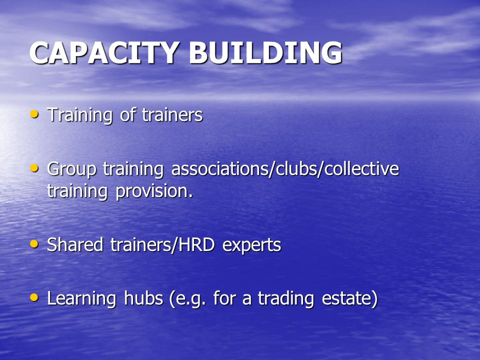 CAPACITY BUILDING Training of trainers Training of trainers Group training associations/clubs/collective training provision. Group training associatio
