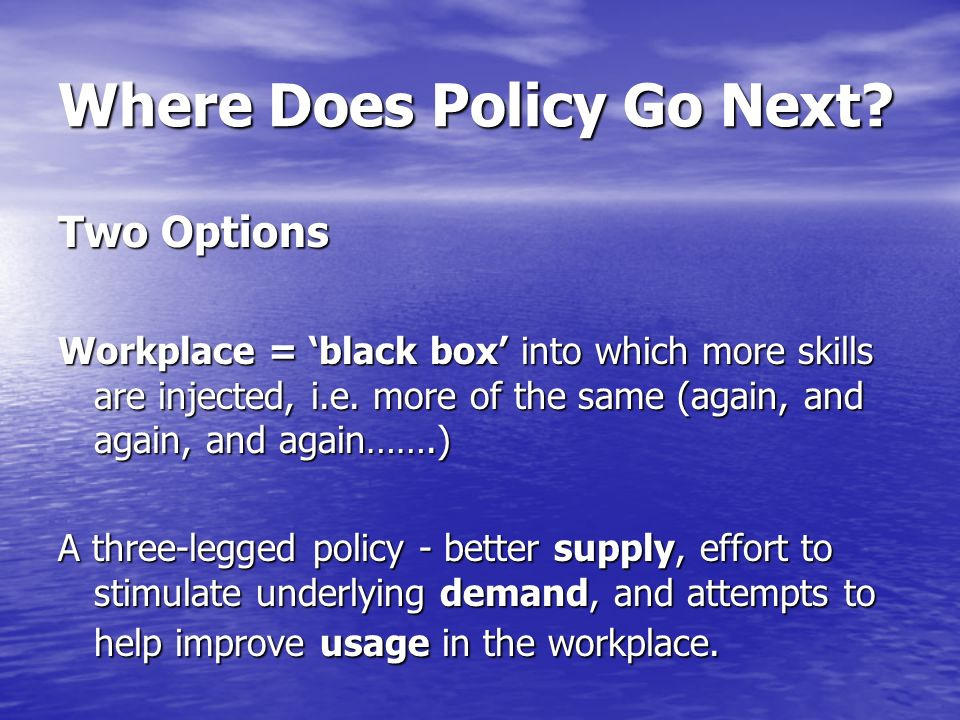 Where Does Policy Go Next? Two Options Workplace = black box into which more skills are injected, i.e. more of the same (again, and again, and again……