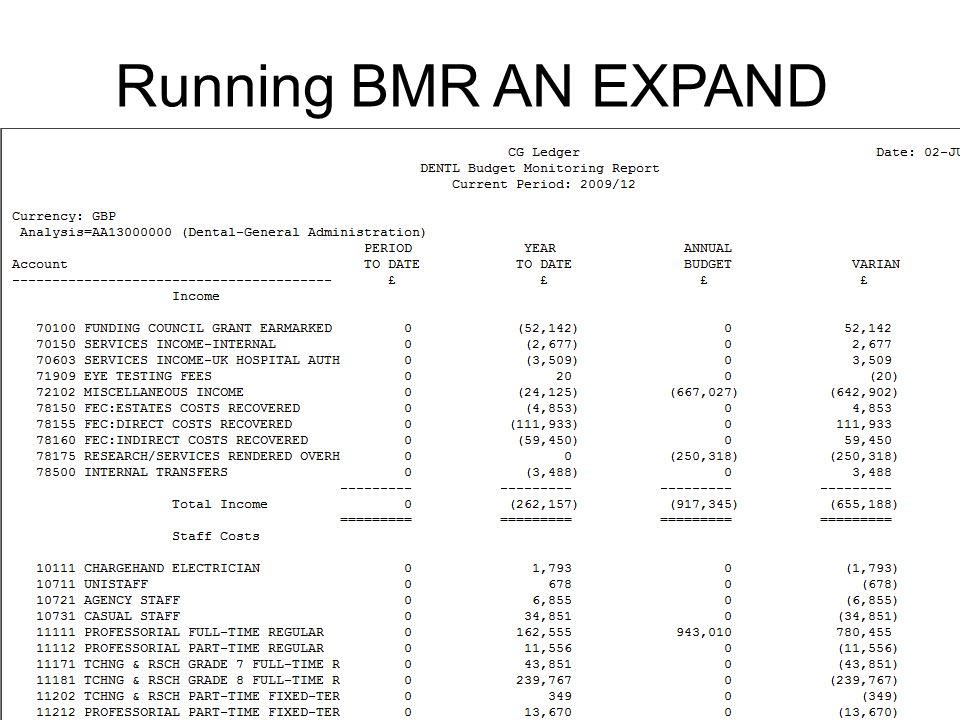 Running BMR AN EXPAND report
