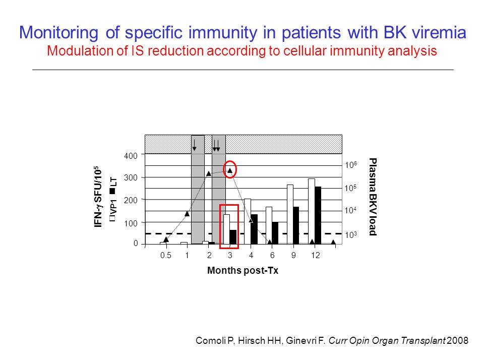 Comoli P, Hirsch HH, Ginevri F. Curr Opin Organ Transplant 2008 Monitoring of specific immunity in patients with BK viremia Modulation of IS reduction