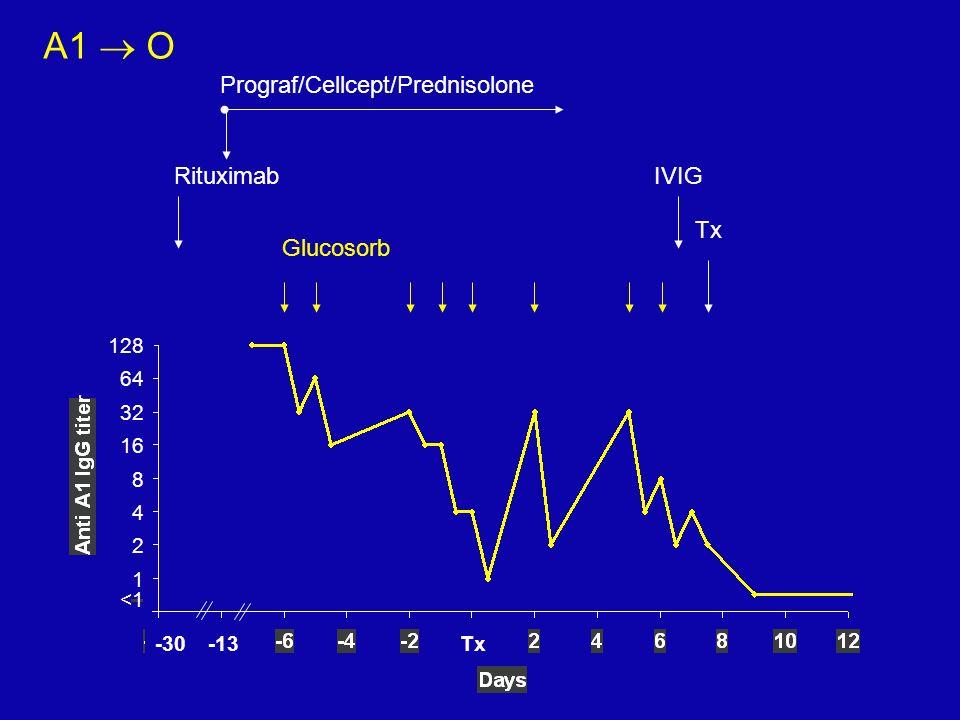 A1 O 128 64 32 16 8 4 2 1 <1 Glucosorb Tx IVIG Prograf/Cellcept/Prednisolone Rituximab -13-30Tx