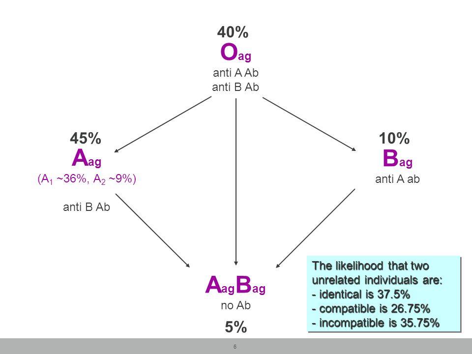 6 O ag anti A Ab anti B Ab A ag B ag no Ab A ag (A 1 ~36%, A 2 ~9%) anti B Ab B ag anti A ab 40% 5% 45%10% The likelihood that two unrelated individua