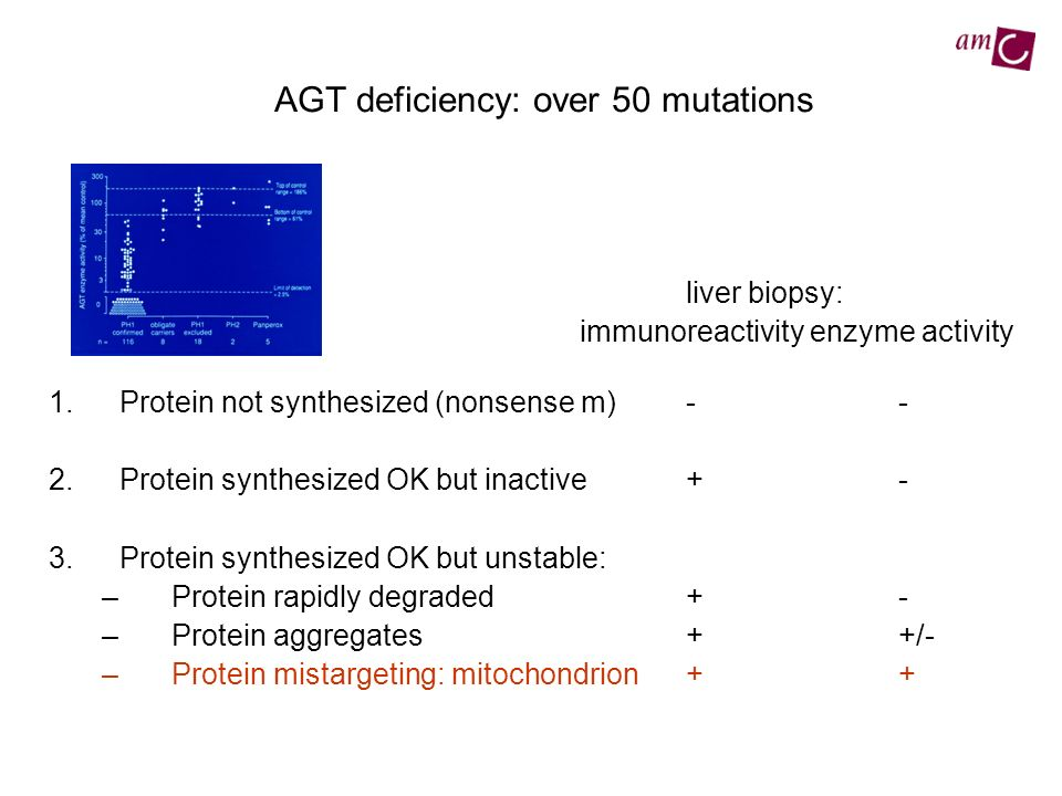 AGT deficiency: over 50 mutations liver biopsy: immunoreactivity enzyme activity 1.Protein not synthesized (nonsense m)-- 2.Protein synthesized OK but