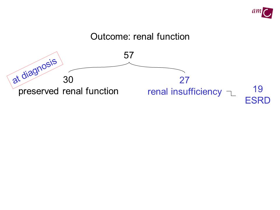 Outcome: renal function 57 30 preserved renal function 27 renal insufficiency at diagnosis 19 ESRD