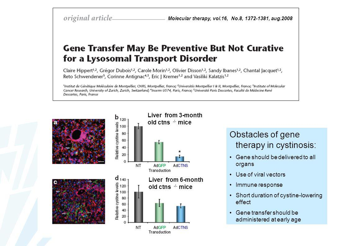Molecular therapy, vol.16, No.8, 1372-1381, aug.2008 Liver from 3-month old ctns -/- mice Liver from 6-month old ctns -/- mice Obstacles of gene thera