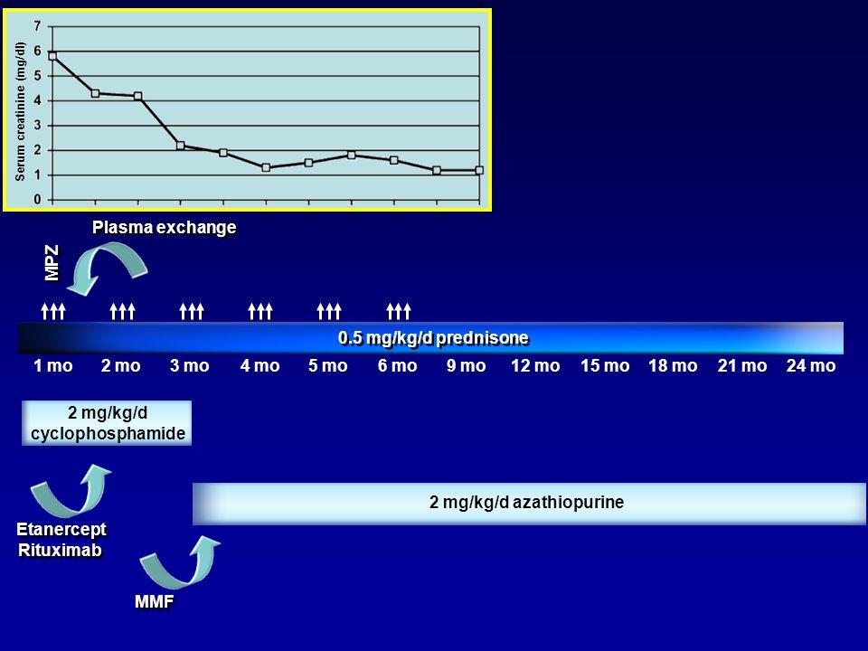 1 mo2 mo3 mo4 mo5 mo6 mo9 mo12 mo15 mo18 mo21 mo24 mo 0.5 mg/kg/d prednisone MPZ 2 mg/kg/d cyclophosphamide 2 mg/kg/d azathiopurine Plasma exchange MM