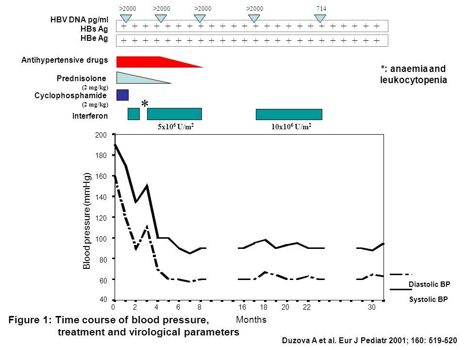 + + + + + + + + + + + + HBV DNA pg/ml HBs Ag HBe Ag Antihypertensive drugs Prednisolone (2 mg/kg) Cyclophosphamide (2 mg/kg) Interferon >2000 >2000 >2