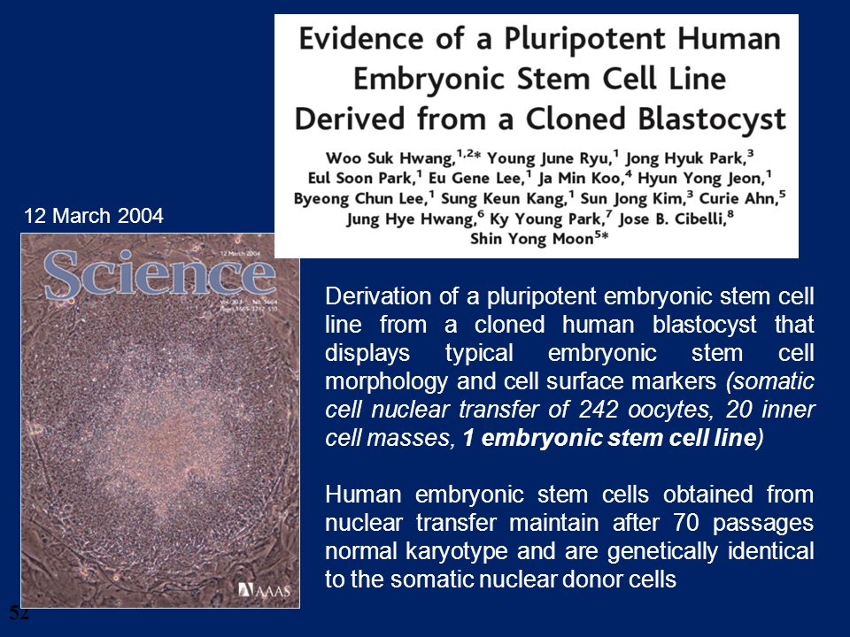 52 Derivation of a pluripotent embryonic stem cell line from a cloned human blastocyst that displays typical embryonic stem cell morphology and cell s